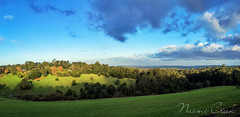 NaomiCreek_iphonepano (Naomi Creek) Tags: green grass afternoon victoria hills emerald pepisland