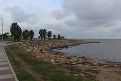 IMG_0988 (fernanda.pallante) Tags: praia faro uruguay teatro playa montevideo farol puntadeleste puntaballena sols losdedos uruguaynatural