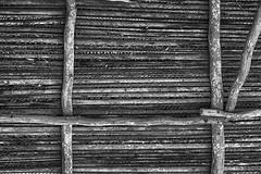 Lo vernáculo (Valo Alvarez) Tags: arquitectura architecture arch desing bw blackwhite black white blancoynegro blanco negro choza techo vernacula lines patron geometric vigas wood madera construction palapa mexico tabasco cunduacan