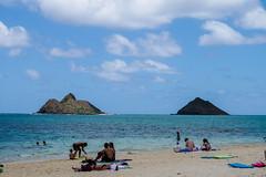 IMGP9530.jpg (ddemura) Tags: hawaii us unitedstates kailua hawaii2016
