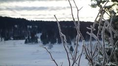 003 (placidoprod) Tags: jura les rousses montagne neige