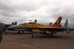 F-16 Fighting Falcon (Tony Howsham) Tags: canon eos force general anniversary aircraft air tiger sigma airshow f16 falcon fighting dynamics raf squadron fairford riat 65th 2016 raffairford 18250 400d belgain