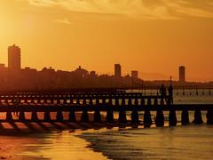 Jesolo mon amour (Riccardo Palazzani - Italy) Tags: jesolo spiaggia beach shore strand playa  praia venice veneto alba sunrise   aube  amanecer morgendmmerung amanhecer dawn     plage sand sabbia italia italie italien italy   itlia itali  italya   riccardo palazzani veridiano3 olympus omd em1 lido pier dock pontile skyline mare sea mer