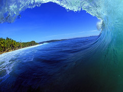 In the Barrel of a Perfect Wave (Christopher Holder Photography & Collections) Tags: wave barrel surfer surfing surf tube ocean surfgirl surfinggirl surfergirl indonesia mentawaii mentawaiiislands tropical paradise us