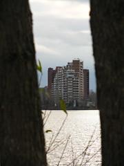 IMG_0978 (Gino Chnard) Tags: arbre btiment eau fleuve montral parcnaturedelledelavisitation urbain ville laval quebec canada