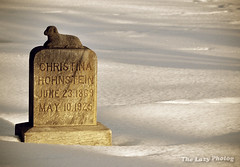 Feb 9 2013 - Christina Hohnstein - June 1869-May 1925 (lazy_photog) Tags: lazy photog elliott photography lonely cemetery headstone grave tombstone child baby lamb winter snow 020913soflatetc