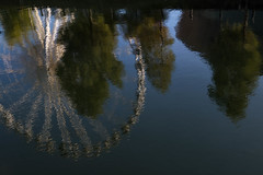 wheel reflections (cathbooton) Tags: canon6d canonusers canoneos abstract impressionist sunshine saturday october liverpool reflection water tree wheel