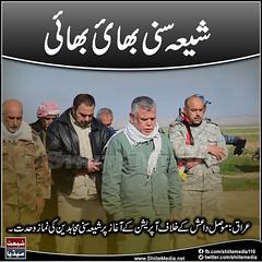 #ShiaSunni #unity (ShiiteMedia) Tags: muharam 1438 ashura shia shiite media killing genocide news urdu      channel q12