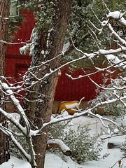 Pine Mountain Club, California (anitablackman49) Tags: winter snow redhouse wheelbarrow