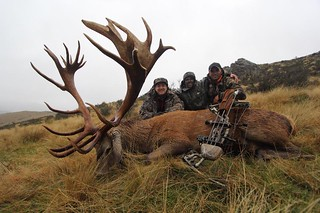 New Zealand Red Stag Hunting - Christchurch 43