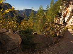 On the trail leading back down 2 (aniko e) Tags: autumn mountain mountains alps berchtesgaden track hiking path trail unterjettenberg berchtesgadenalps