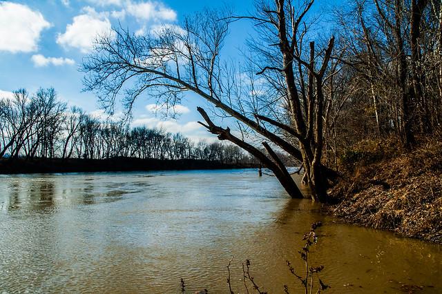 Glendale Fish & Wildlife Area - East Fork White River - November 25, 2014