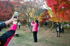 * (Sakulchai Sikitikul) Tags: street pink japan photographer streetphotography snap ricoh kawaguchiko iphone ricohgrv