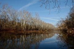 Olentangy in Winter (tim.perdue) Tags: county blue trees winter ohio sky brown white cold reflection nature river bare delaware olentangy
