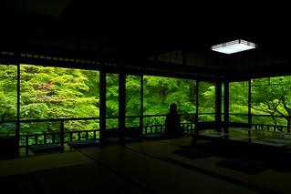 瑠璃の庭 - 瑠璃光院 / Rurikou-in Komyo-ji Temple