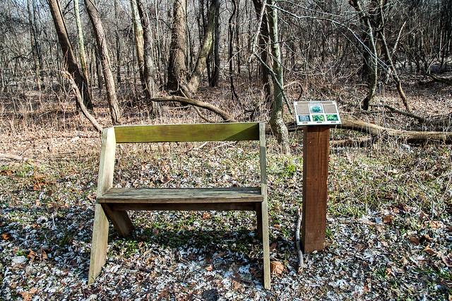 Eagle Slough Nature Preserve - January 5, 2015