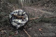 The new year has begun I (Myrkwood666) Tags: wood forest alone belgium belgique belgie ballon balloon newyear forgotten bos wald flanders belgien vergeten vlaanderen flandern vergessen myrkwood