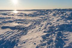 (Oleg Ovsienko) Tags: winter sea snow ice beach russia sony      taganrog