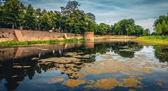 The Duke's walls (Ingeborg Ruyken) Tags: trees water pond bomen flickr zomer citycenter denbosch centrum citycentre kermis dropbox augustus citywall shertogenbosch vijver binnenstad stadsmuur natuurfotografie 500pxs