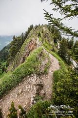 Trailrunning-Traum an der Nagelfluhkette. (ulligunde.com - Bergsport.Reisen.Fotografie) Tags: nagelfluh nagelfluhkette nebel sturm allgu immenstadt sonthofen laufen running trail