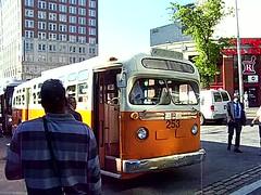 Ebony : Bus - Tasty Blacks