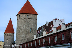 (Jonan G.E) Tags: tower architecture canon europe estonia baltic medieval historic oldtown tallin medievalcity canon40d jonanesguerra