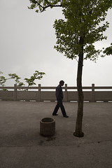 Huangshan (arnd Dewald) Tags: china mist mountain nature berg fog nebel natur    huangshan anhui  arndalarm zhnggu mg490559k7e1sh10eeklein