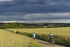 RADFAHRER BEI RAVENSBURG (PADDYSCHMITT.DE) Tags: ravensburg weizenfeld oberschwaben mehlsack gewitterwolken weststadtravensburg radfahreroberschwaben radfahrerravensburg reiterravensburg trmestadtravensburg