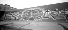 Leith Stream Graffiti (Steve_Ting) Tags: dunedin newzealand steveting stevetingphotography pinhole pinholecamera graffiti film filmphotographypodcast filmphotography filmisfun blackandwhite monochrome kodak kodaktrix analog analogphotography ondu