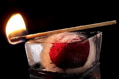 Fire and Ice #Hot/Cold #HMM #MacroMondays (nicoheinrich86) Tags: red black macro reflection rot art ice closeup fruit dark fire frozen strawberry dof pov kunst sony details flame nah holz eis feuer flamme frucht schatten spiegelung streichholz schwarz icecube dunkel reflektion erdbeere schrfentiefe obst nass 2016 eiswrfel gefrohren macromondays hx400v