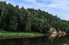 Riverbank forest (Mauro Hilrio) Tags: forest river latvia nature landscape reflection cliffs trees woodland outdoor water