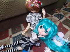 Dimenses [05/06] (Meteor-a) Tags: bjd ball jointed doll pullip cute kawaii hatsune miku minzy magic time miro connor femboy galinha pintadinha