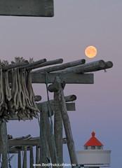 La Luna and the stoccafish (June Grønseth EFIAP PPSA) Tags: laluna stoccafish tørrfisk lofoten fullmoon fullmåne fyrlykt hjeller fishracks bestphotolofoten junegrønseth