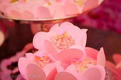 HELENA 1 ANO SITE-54 (agencia2erres) Tags: 1 ano helena aniversrio aniversario party first bday birthday one bebe menina jardim piquenique garden flores flor flower flowers