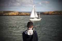 The Young Apprentice (ken Dowdall) Tags: colliemoreharbour sea irishsea water bokeh depthoffield portrait sailingboat rigging sails boat dublin dublinharbour dublinbay dalkeysound ireland