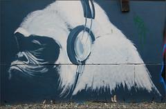 East End Street Art (Mabacam) Tags: 2016 london eastend shoreditch streetart wallart urbanart publicart spraycanart aerosolart painting paint mural freehand graffiti urbanwall wall animal bw blackandwhite