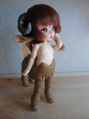 Mysterious Melba (~Akara~) Tags: face up mod ears luna fairy fawn tiny ear land fl custom luts hybrid delf fairyland pf modded fee centaur puki faceup pkf pukifee