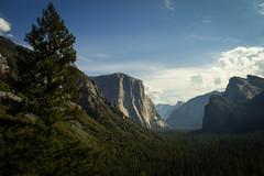 El Capitan-1 (Elias2807) Tags: california mountain yosemite elcapitan sierranevada yosemitevalley