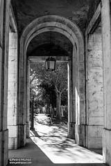 38/50 Puerta a los jardines (Pedro Payo) Tags: bw blanco canon de real 50mm los puerta y negro jardines palacio 6d aranjuez