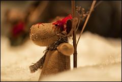 _SG_2014_12_3335_IMG_3569 (_SG_) Tags: santa christmas weihnachten star schweiz switzerland candle suisse time market kerze weihnachtszeit christmasmarket basel santaclaus claus bale merrychristmas nikolaus stern weihnachtskugel christmastime kugel basle christmasball feliznavidad buonnatale 2014 froheweihnachten samichlaus joyeuxnoël santigläuse baslerweihnachtsmarkt baslerweihnachtsmarkt2014 christmasmarket2014