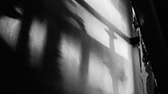 double banister (pix-4-2-day) Tags: mansion house bristol banister gelnder treppengelnder shadow schatten wand wall clifton england black white schwarzweis pix42day