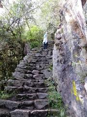 Machu Picchu-57