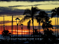 When the sun goes down ... (peggyhr) Tags: ocean blue sunset orange white black yellow clouds marina wow grey lights hawaii silhouettes mauve sailboats masts coconuttrees thegalaxy 50faves peggyhr thegalaxyhalloffame thelooklevel1red thelooklevel2yellow thelooklevel3orange dsc04962a