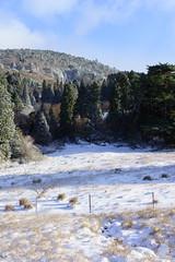 -0833 (Gansan00) Tags: winter snow japan landscape sony hiroshima     ilce7r