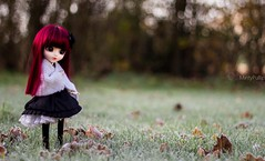 C'est dans le froid et le givre que la plus pure des fleurs peut s'épanouir. (MintyP.) Tags: canon island eos 50mm doll whispering wig groove pullip custo merl 600d obitsu mintypullip elwyna