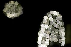 Weihnachtsbaum-Lichter_Christmas tree lights (p.schmal) Tags: hamburg weihnachtsbeleuchtung dmcgx7