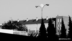 Luna Llena (Landahlauts) Tags: bw moon blancoynegro night noche andaluca south luna full fullmoon granada andalusia lunallena andalusien andalousie andalusie andaluz llena andaluzia    andaluzja andaluzio                  andalouzia andalusiya