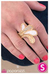 1374_ring-goldkit2may-box03