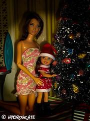 RileyandSky (rollerskate13) Tags: barbie mattel barbiehouse aframehouse barbiechristmas katniss hungergames katnisseverdeen