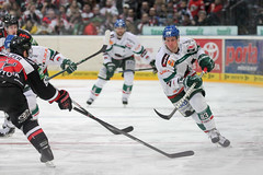 """DEL15 Kšlner Haie vs. Augsburg Panthers • <a style=""""font-size:0.8em;"""" href=""""http://www.flickr.com/photos/64442770@N03/16114936210/"""" target=""""_blank"""">View on Flickr</a>"""